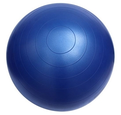 Fitterfirst 65cm Classic Exercise Ball Chair