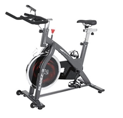 Bladez Fitness 400IC Indoor Cycle