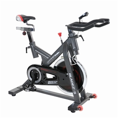 Bladez Fitness 600IC Indoor Cycle