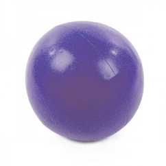 360 Athletics 8 Inch Pilates Ball (Demo)