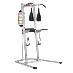 Bowflex BodyTower (Dip, Pull Up, and Knee Raise)