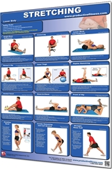 Stretching Poster - Lower Body