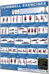 Dumbbell Exercises: Shoulder & Arms Poster